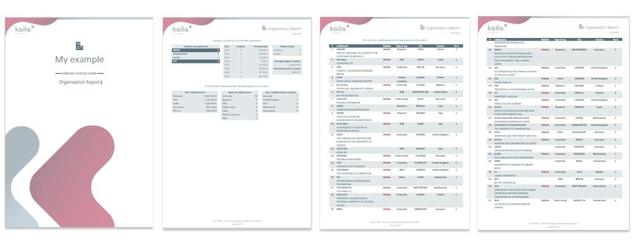 Organisation report